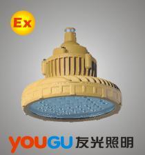 GBPC8122 LED免维护高效防爆灯