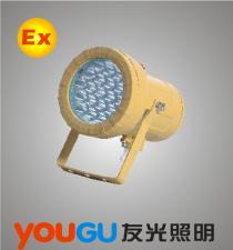 BAK51免维护高效防爆灯